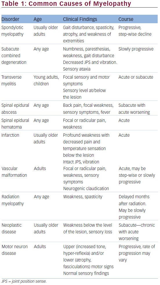 Different Presentations of Myelopathy—A Case Series