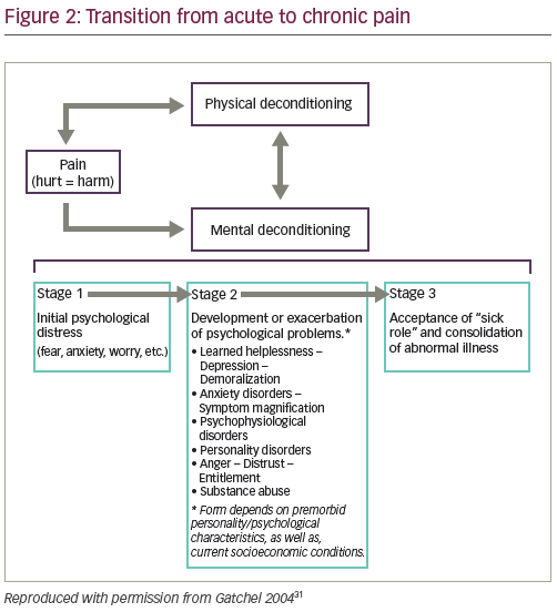 The Biopsychosocial Model of the Assessment, Prevention, and