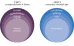 >The Biopsychosocial Model of the Assessment, Prevention, and Treatment of Chronic Pain