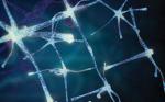 Can Objective Measurements Improve Treatment Outcomes in Parkinson's Disease?