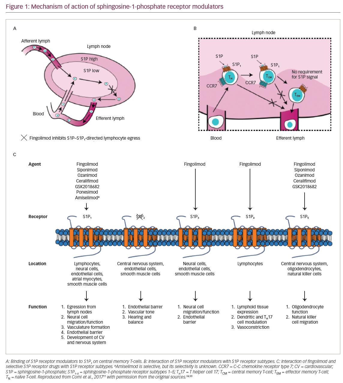 Sphingosine 1 Phosphate Receptor Modulators In Multiple